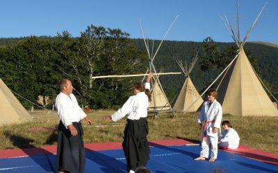 maitre aikido Aiki'Tipi baton tipi